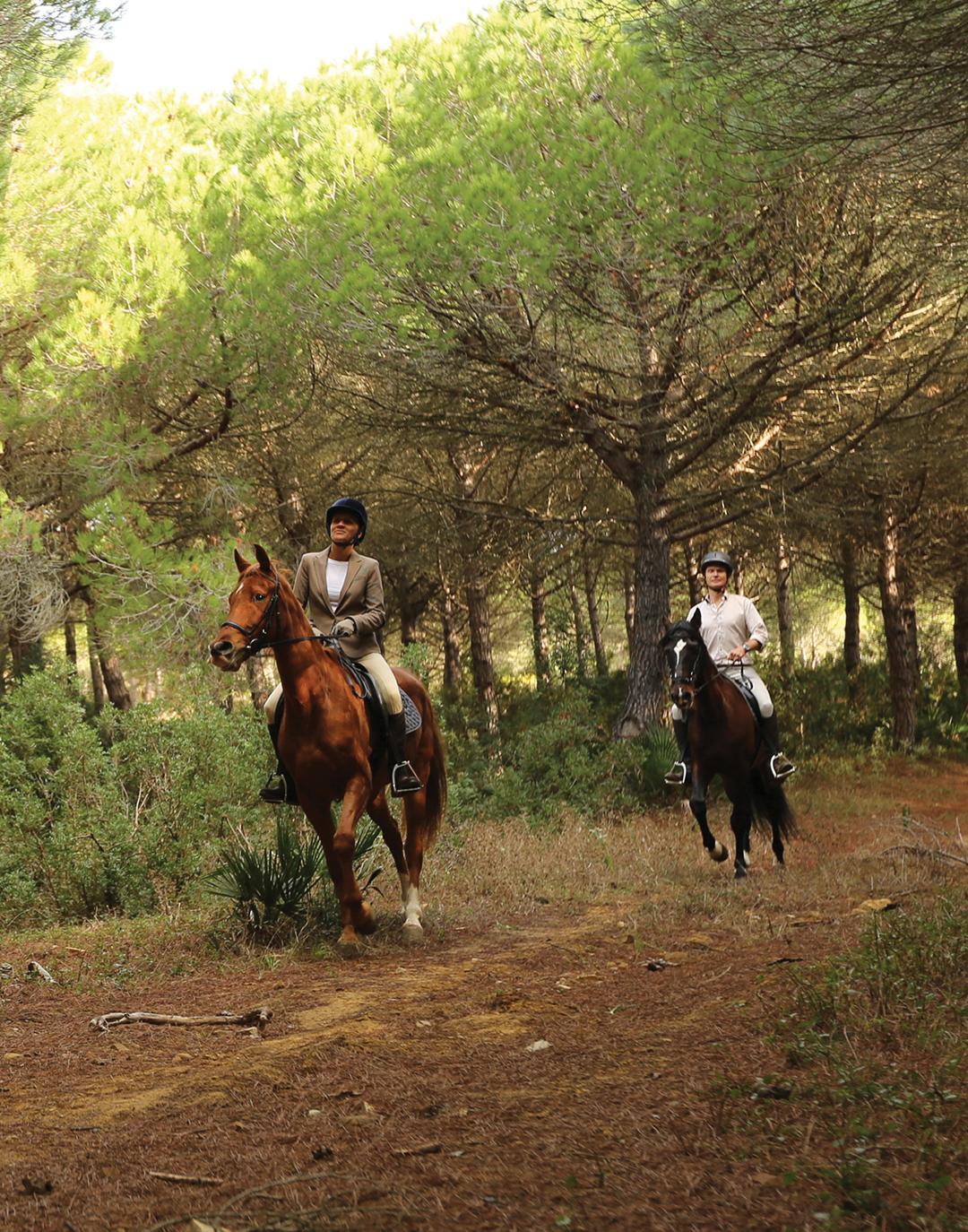 horseback-lifestyle